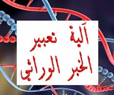 درس الخبر الوراثي : مفهومه، طبيعته و آلية تعبيره